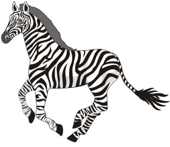 зебра-стихи для детей дошкольного возраста