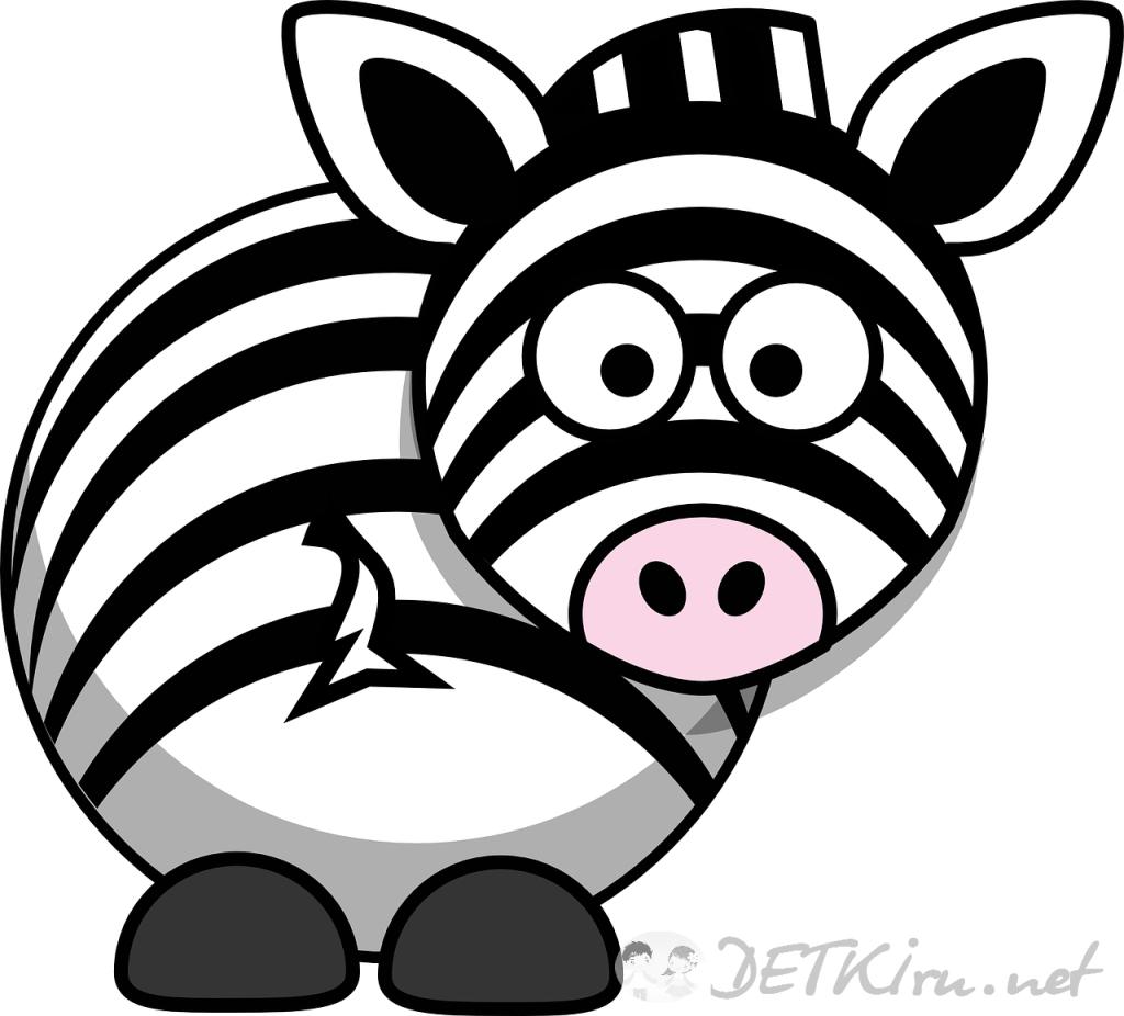 зебра картинки для детей 2