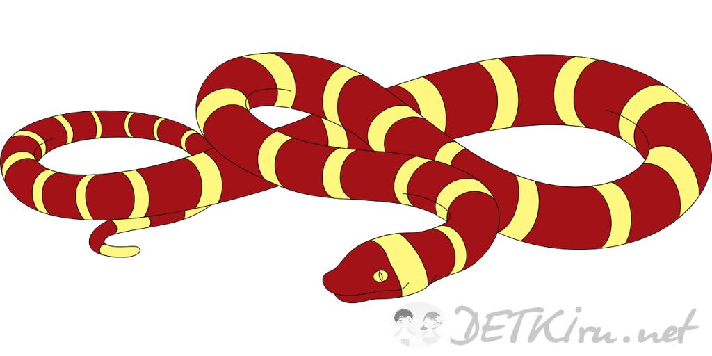 змея картинка для детей 4