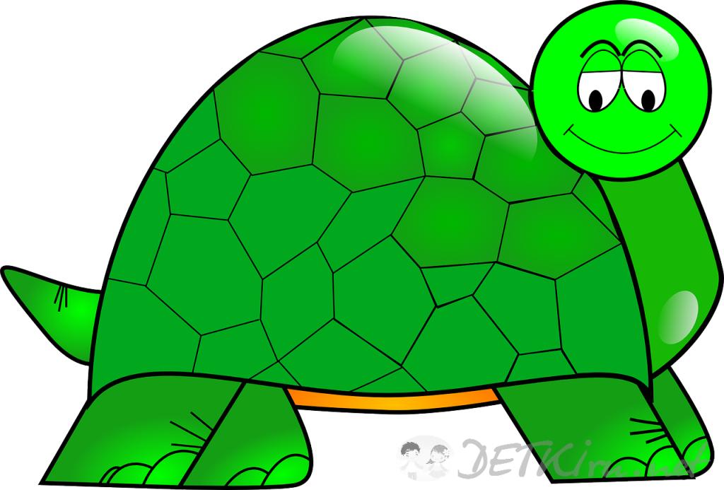 черепаха картинки для детей 1