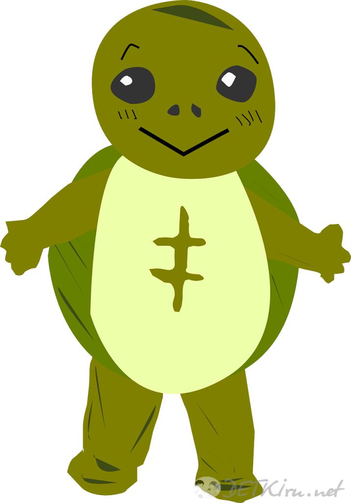 черепаха картинки для детей 2