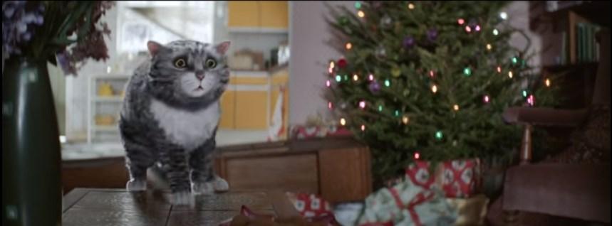 рождественский кот видео 2
