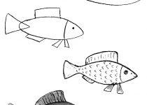 Как нарисовать рыбу поэтапно детям - 65 способов