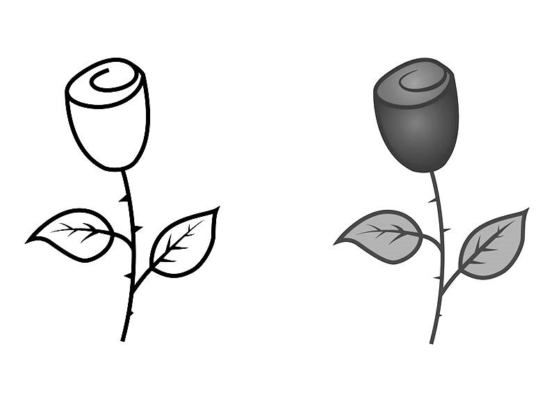 Как нарисовать розу поэтапно: 15 способов
