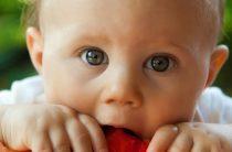О правильном питании для детей