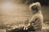 Здоровое воспитание и развитие личности ребенка — 7 основных ошибок