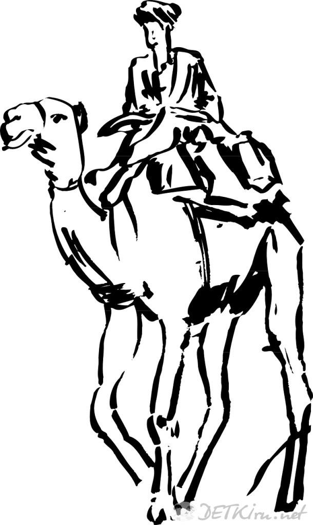 верблюд картинки для детей 2