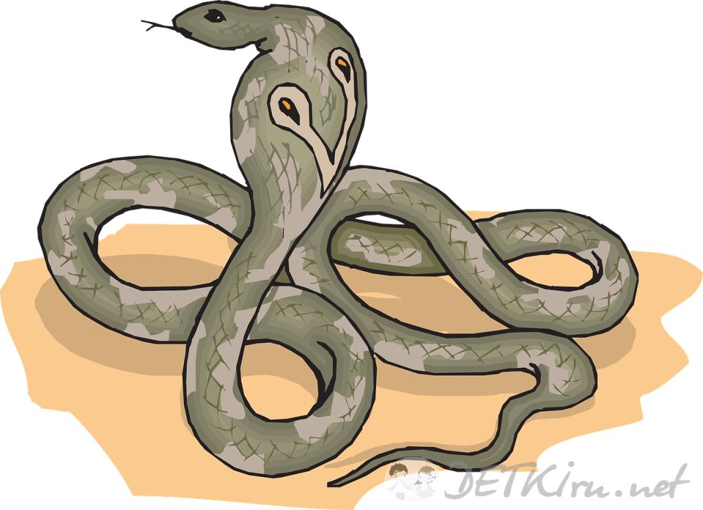 змея картинка для детей