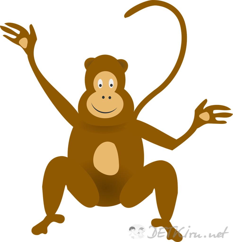 обезьяна картинки для детей