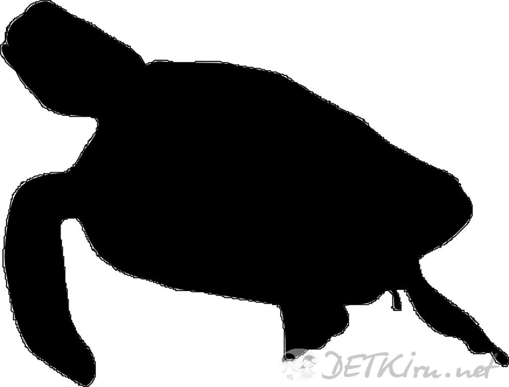 черепаха картинки для детей, трафарет
