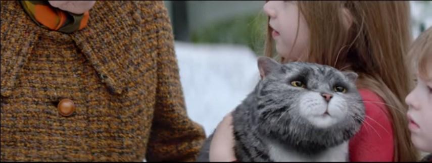 рождественский кот видео 3