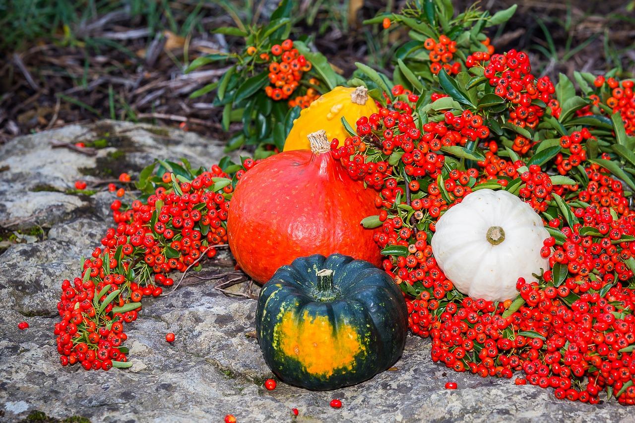 Осенняя композиция 6 фото