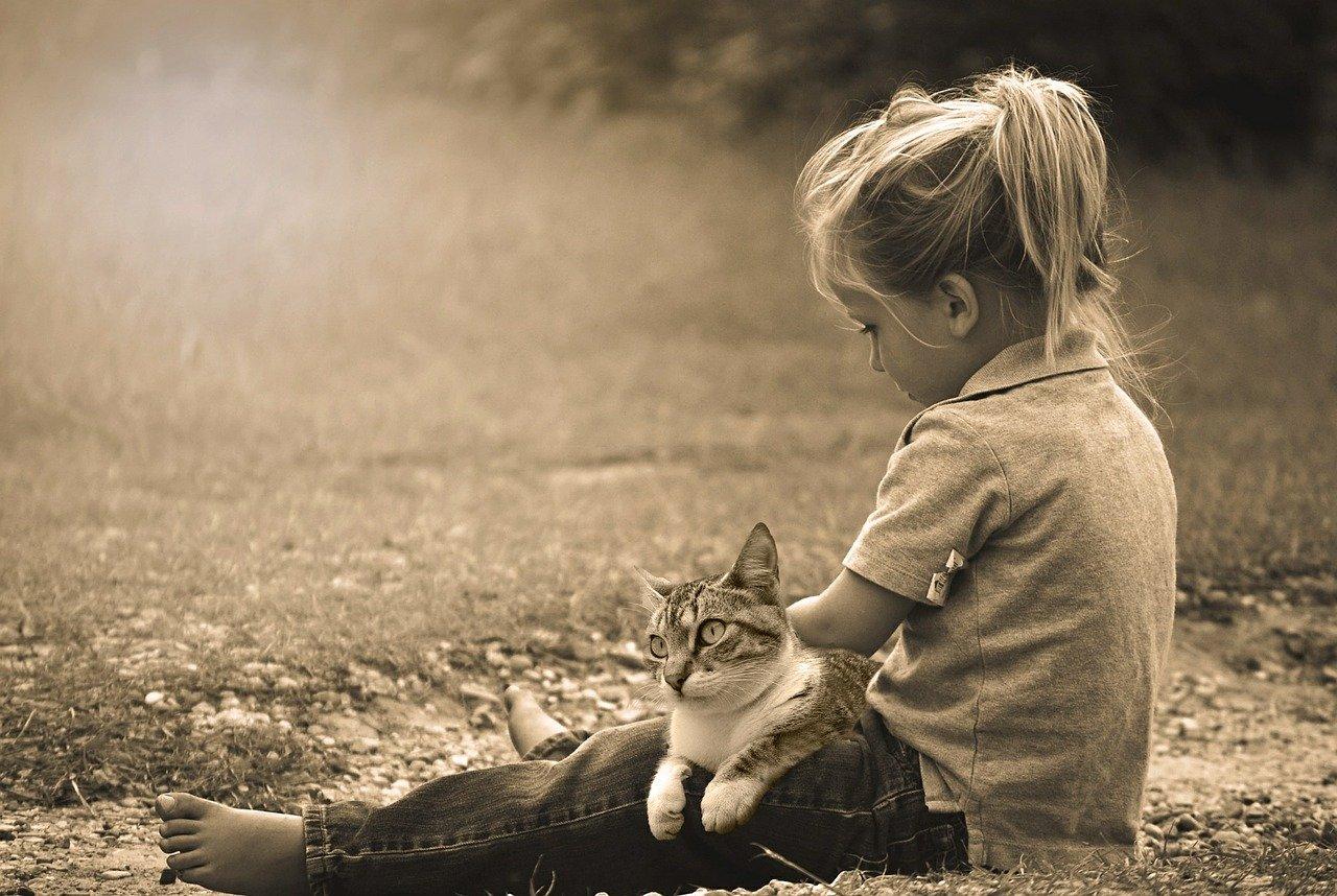 Здоровое воспитание и развитие личности ребенка - 7 основных ошибок