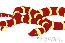 Змея. Картинки для детей, шаблоны, трафареты