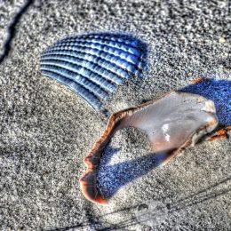Игры на песке для детей: 10 простых идей