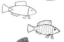 Как нарисовать рыбу поэтапно детям — 65 способов
